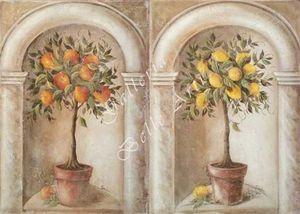 AFFRESCHI BABILONIA -  - Trompe L'oeil Malerei