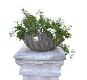 Demeure et Jardin - coquillage - Sockelvase