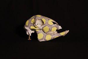 CRANATOMIE -  - Deko Schädel