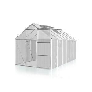 WHITE LABEL - serre polycarbonate 310 x 190 cm 6 m2 - Gewächshaus