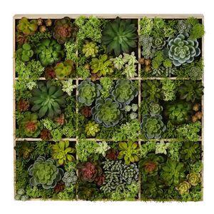 MAISONS DU MONDE - plante artificielle 1420082 - Kunstpflanze