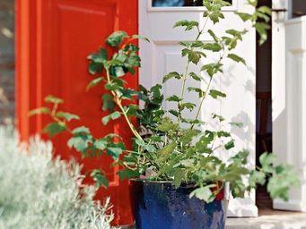 DEROMA France - bleu de chine - Garten Blumentopf