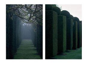 HUMUS Images de Jardin -  - Fotografía
