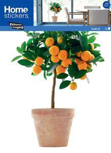 Nouvelles Images - sticker fenêtre oranger - Adhesivo