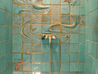 AGIR  C�ramique - la douche dragonbleu - Azulejos Para Cuarto De Ba�o