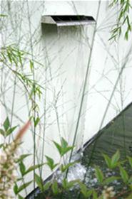 Sturgeon  Andy Garden Design - dulwich - Fuente Mural
