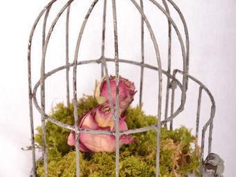 Coquecigrues - cage volière - Gabbia Per Uccelli