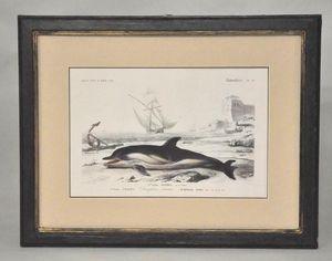 Demeure et Jardin - gravure dauphin - Incisione