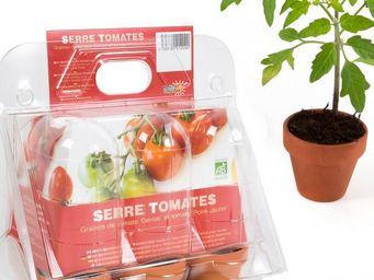 Radis Et Capucine - miniserre pour ses semis de tomates - Giardino Per Interni