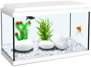 ZOLUX - aquarium enfant blanc 33.5l - Acquario
