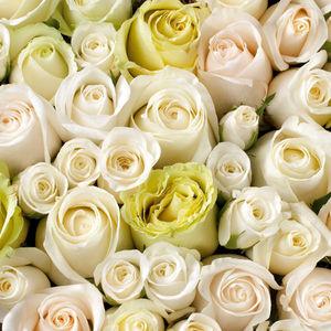 Au nom de la Rose - coeur de roses - Composizione Floreale