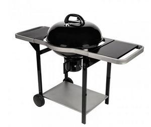 Somagic - woodcreek - Barbecue A Carbone